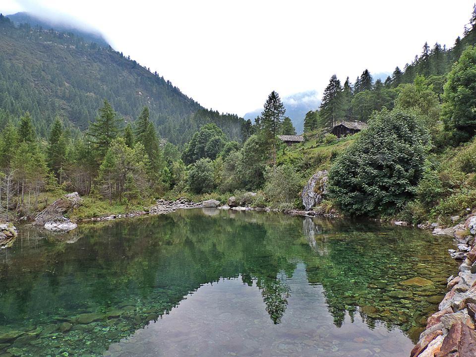 Verso l'Alpe Larecchio - Piemonte