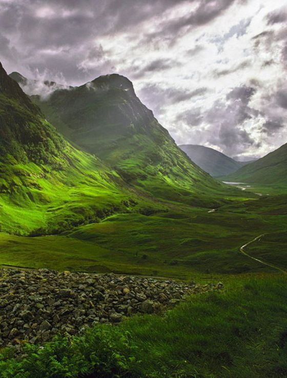 Highland scozzesi - Photo via Pinterest