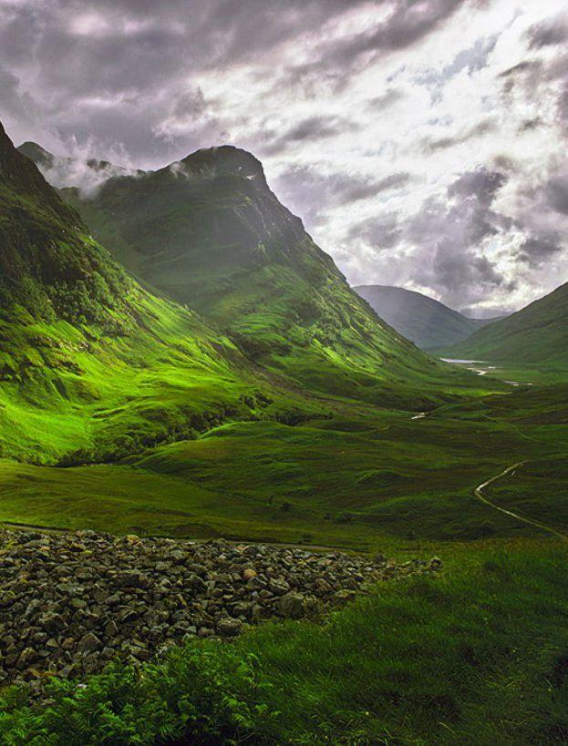 Highland scozzesi - Photo via Pinterest