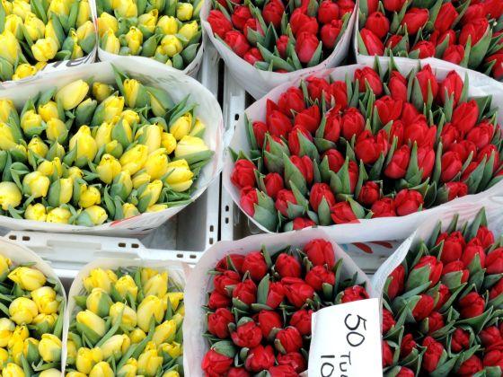 Tulipani al Bloemenmarkt